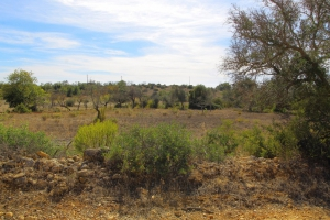 Property Ref: 13702 - Algoz, Algarve, Portugal